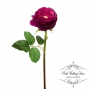 Amour Rose Open Fuchsia (45cmH)