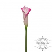 Calla Lily Early Bloom Stem (60cmST) Real Touch Hot Pink