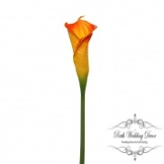 Calla Lily Early Bloom Stem (60cmST) Real Touch Orange