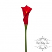 Calla Lily Early Bloom Stem (60cmST) Real Touch Red