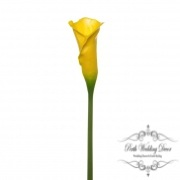 Calla Lily Early Bloom Stem (60cmST) Real Touch Yellow
