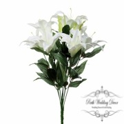 Casablanca Lillies with 7 Flowers and 2 Buds White (62cmH)