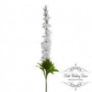 Delphinium White (108cmST)