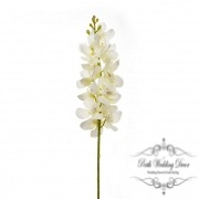 Dendrobium Orchid Cream (15x flowers 78cmST)