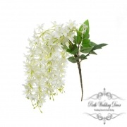 Dendrobium Star Orchid White (60cmH)