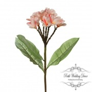 Frangipani Spray Cream.Pink (35cmH)