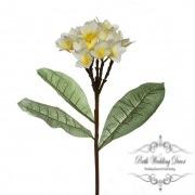 Frangipani Spray Cream.Yellow (35cmH)