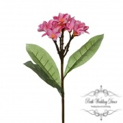 Frangipani Spray Hot Pink (35cmH)