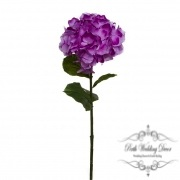 Giant Magic Hydrangea Purple (23cmDx80cmH)