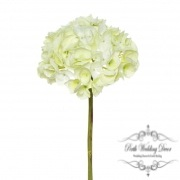 Giant Sahara Hydrangea Light Green (59cmH)