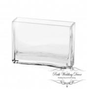 Glass Rectangle Vase 6x18x12cmH Clear-1