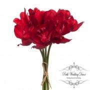 Orchid Cymbidium Bouquet (6 Heads 25cmST.) Dark Red