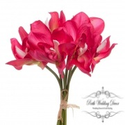 Orchid Cymbidium Bouquet (6 Heads 25cmST.) Hot Pink