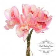 Orchid Cymbidium Bouquet (6 Heads 25cmST.) Pink