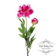Peony Alison with Bud (88cmST) Hot Pink