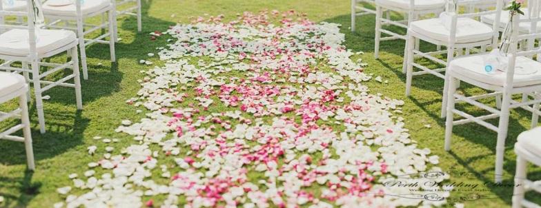 Rose petal full aisle. $35.00 each