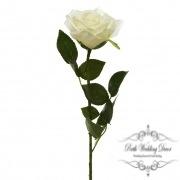 Short Stem Sonia Rose Ivory (30cmH)