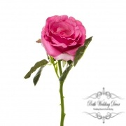 Short Stem Sonia Rose Pink (30cmH)