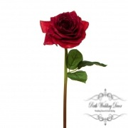 Short Stem Sonia Rose Red (30cmH)