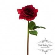 Short Stem Sonia Rose Red (30cmH)