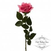 Siena Rose Open Real Touch Hot Pink (75cmH)