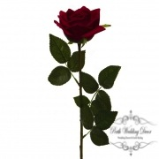 Siena Rose Open Real Touch Red (75cmH)