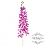 Tropical Orchid Dendrobium Fuchsia (95cmH)
