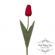 Tulip Monet Real Touch Red (55cmST)