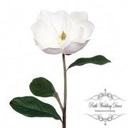 Victoria Magnolia Open White (90cmH)