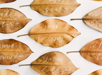 autumn 25
