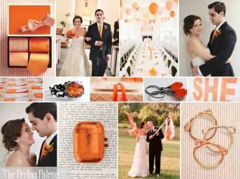 orange 43