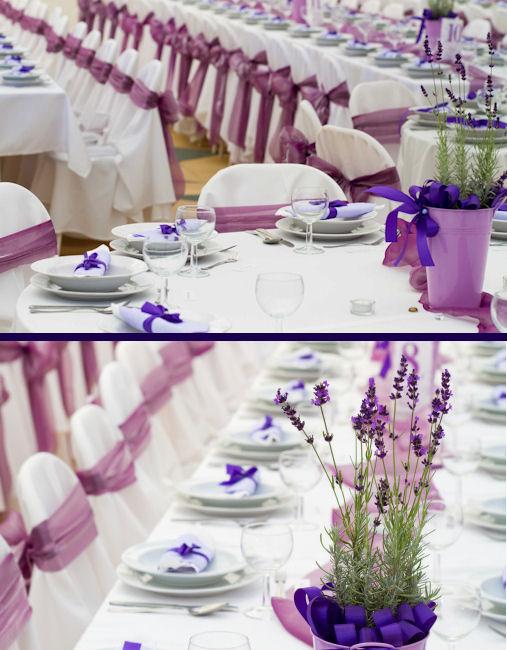 purple 104