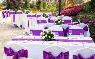 purple 26