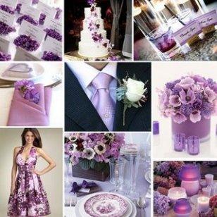 purple 41