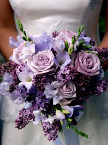 purple 42