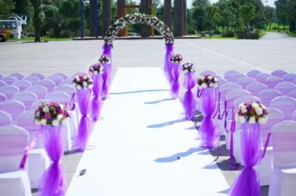 purple 59