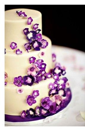 purple 81