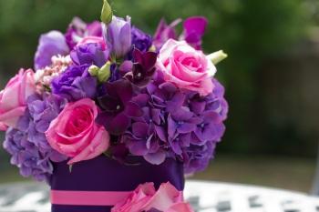purple 87