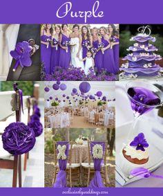 purple 91