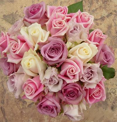 rose 39