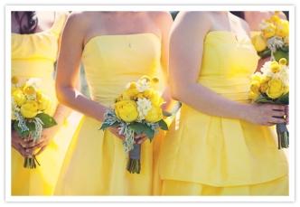yellow 43